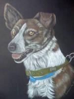 dog comision scrat by shirls-art