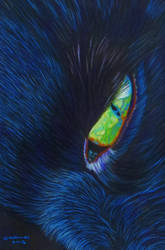 black cat 1 by shirls-art