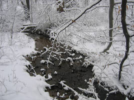 Winter River by Ealucids-Photos