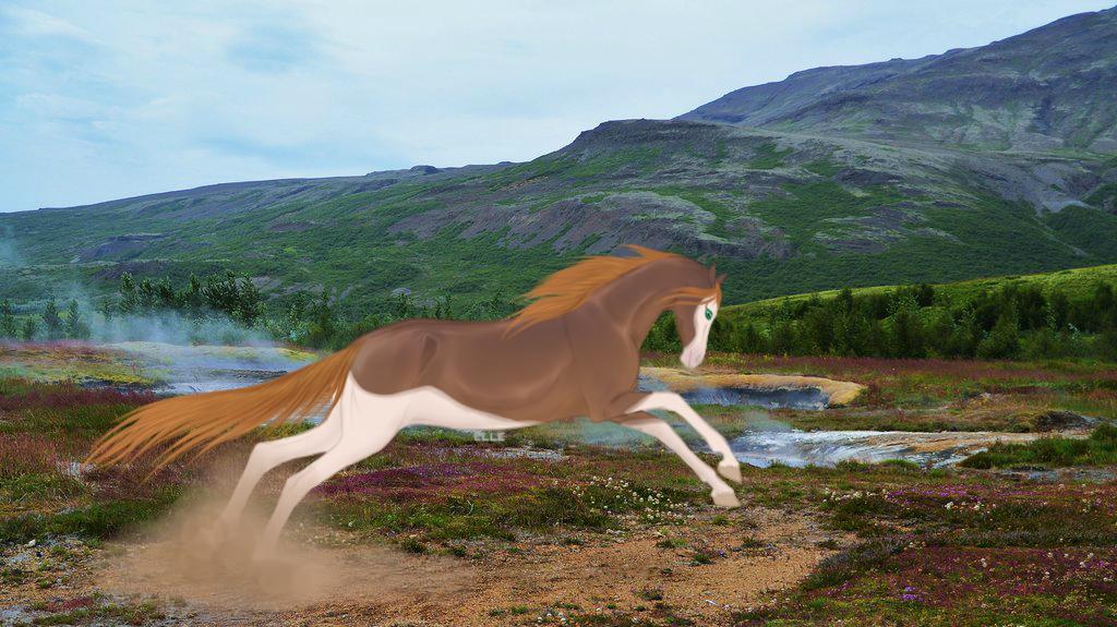 Wild and Free by ElderiaArts