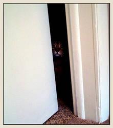 the Boognish Hiding by Jungle-Jew