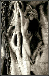 Rooted by Jungle-Jew