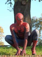 Spider-Man by mesocoscia