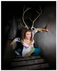 Deer... by HugoLeijon