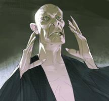 Lord Voldemort by Ramonn90