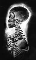 skeleton invert by munkay