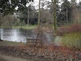 Kew Gardens: Lake #4 by jadedlioness