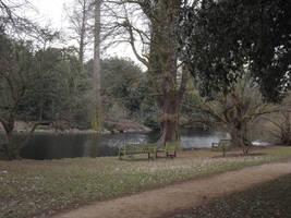 Kew Gardens: Lake #3 by jadedlioness