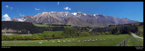 This is New Zealand by neilcreek