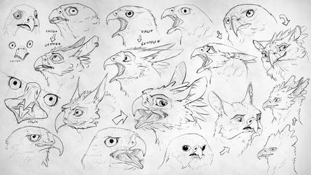 Turning birds into gryphons p1 (practice) by Rastaban26