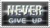 never give up by Pushok-12