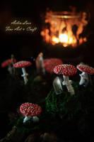 miniature mushrooms with quartz crystal by Gwillieth