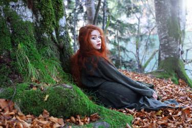 forest id by Gwillieth