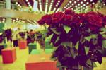 Vintage Roses by raoros