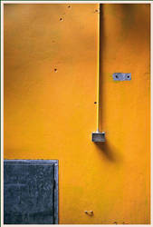 Perfect Yellow. by agonis