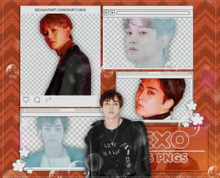 [PNG PACK] Xiumin x Chen - EXO (LOVE SHOT) by fairyixing