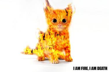 Kitten A'La Flambe by ViolentCat345