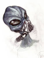Close up Grey by Turbid-D