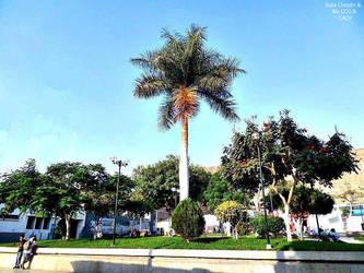 4b3a 2013 Plaza de Armas by Chepen-Ruta