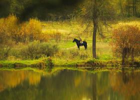 Autumn Reflections by ksushiks