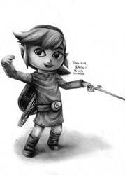 Toon Link - Super Smash Bros Brawl by reniervivas666