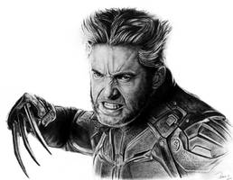 X-Men: Days of Future Past / Wolverine by reniervivas666