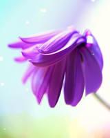 Purple Hair by Mars-Hill