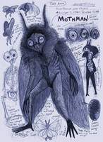 Mothman Anatomy Page by Kway100