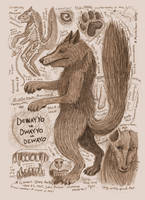 Dewayo/Dwayyo Anatomy Illustration by Kway100