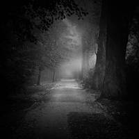 Vanishing light by WiciaQ