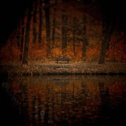 Forgotten Memories by WiciaQ