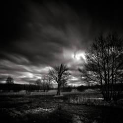 Light and shadow - study XXI by WiciaQ