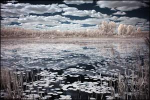 Fallen clouds by WiciaQ