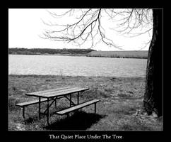 That Quiet Place by xanadian