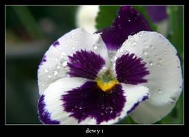 dewy 1 by xanadian