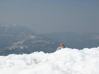 Stupidfox - Snow Hunting by GreyxBird