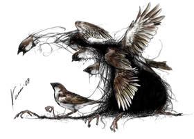 Truth about... sparrows by Kuroi-kisin