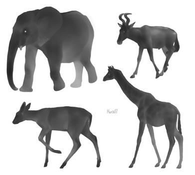 Bw animals by Kuroi-kisin