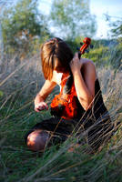 Red violin by silvestru