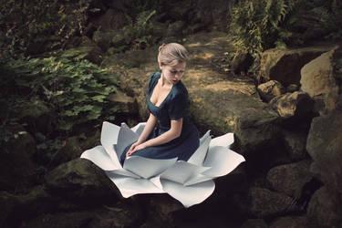 Alice in Wonderland by ylorish