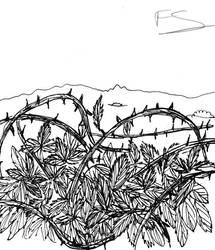 Inktober day 25: Prickly by Lady--knight