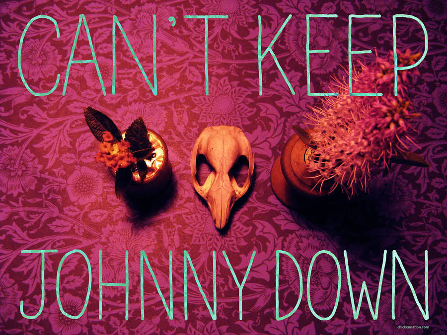 Can't Keep Johnny Down 2 of 3 by zpxlng