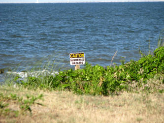 Beach notice by AllFourOne