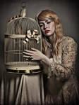 Cage of Dreams by Mircalla-Tepez