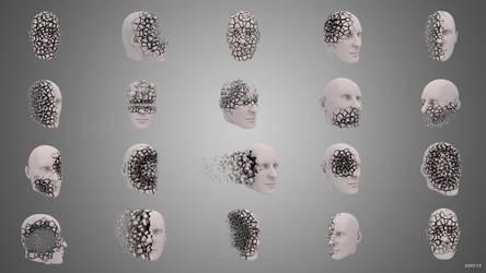 3D Voronoi Fractured Head by kopofx