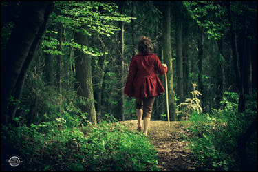 Bilbo Beutlin VI by RemusSirion
