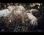 Post Mortem V by RemusSirion