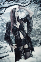 Snow VII by RemusSirion