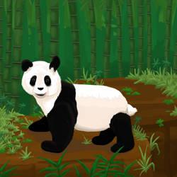 Panda Portrait II by temptryst