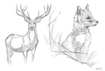 Animal Sketches by Keililly